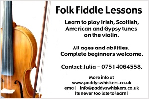 Folk Fiddle and Violin Lessons
